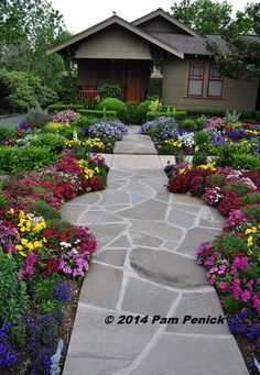 Drive-By Gardens: No-lawn flower garden at Houston Heights bungalow | Digging. Click through for more eye candy!