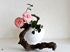 Someday Ikebana and I will be friends:)