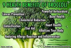 Broccoli contains glucosinolates, phyto-chemicals with powerful anticancer properties