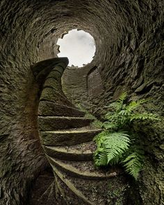Stairs leading out of the ground - perhaps a way out of the rabbit hole for Alice