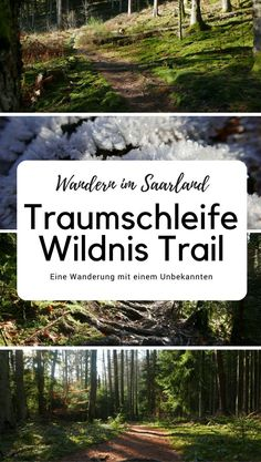 Saarland: Traumschleife Wildnis-Trail It's winter here in the Saarland and crispy cold. Frost is everywhere and the sun is shining. The perfect day to hike the Dream Trail Wilderness Trail. Hiking Germany, Germany Travel, Europe Destinations, Things To Do In Cornwall, Wilderness Trail, Hiking Routes, Reisen In Europa, Colorado Hiking, Winter Hiking