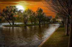 Parcul Alexandru Ioan Cuza (IOR) în București, București