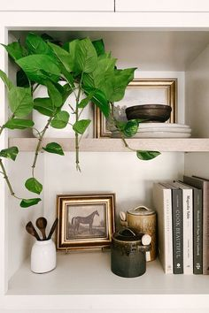 Finish off the look with an artificial hanging plant. Faux plants are the maintenance-free way to go to help create the perfect shelf vignette. Shop this look by @raising3foodies at Afloral.com. Decorating Small Spaces, Decorating Your Home, Pathos Plant, Artificial Succulents, Silk Plants, Real Plants, Plant Shelves, Hanging Plants, Plant Decor