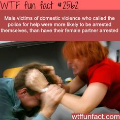 Male victims of domestic violence -WTF funfacts