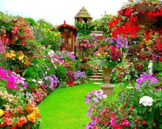 would love to have a garden like this not sure where it is picture found on facebook at le paradis des images