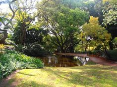 The Harold Boas Gardens are a tranquil place at which to unwind.