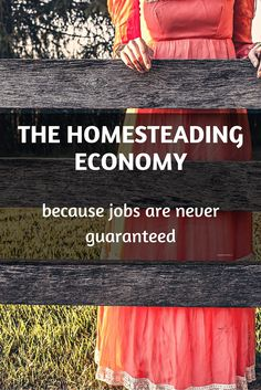 The Homesteading Economy - Just Plain Marie Homesteading and Simple Living