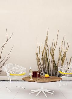 Bertoia Seating Collection   Designed by Harry Bertoia (Seat pad in Sunflower)