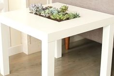 Get Fancy AF And Turn A Table Into A Succulent Garden