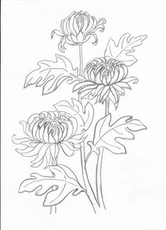 Flower Line Drawings, Simple Line Drawings, Flower Sketches, Art Drawings, Botanical Art, Botanical Illustration, Illustration Art, Embroidery Applique, Embroidery Stitches