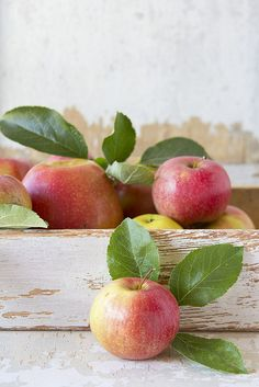 color inspiration: gold, green, red, pale cream....apples in a wood crate...