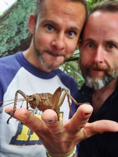 Dominic Monaghan and Billy Boyd in New Zealand with a Weta! BE CURIOUS! :D