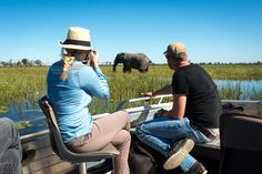 Wildlife sighting at Jao Camp, Botswana
