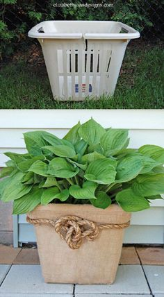 Laundry Basket Planter - Love the rope with the burlap