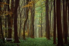 Arriving Nowhere by larsvandegoor.com, via Flickr