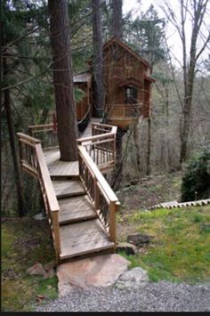 Deck leading to tree house