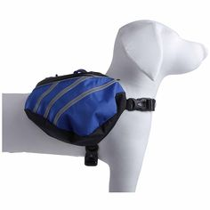 Everest Pet Backpack -- Insider's special review you can't miss. Read more  : Cat carrier