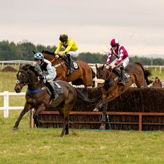 https://flic.kr/p/24jcEov | They're all over safely. | Avon Vale racing at Larkhill.