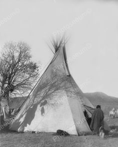 Indian Teepee Vintage Montana 1905 8x10 Reprint Of Old Photo
