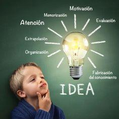 Continuamos compartiendo con vosotros artículos relacionados con la educación, el estudio, los exámenes, las clases y los profesores particulares. Hoy queremos responder a la siguiente pregunta: ¿Por qué no aprendemos todos de la misma manera? Hay siete fases por las que pasa el cerebro de los niños cuando aprender y según la forma de aprender distinguimos cuatro tipos de niños.