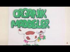 Canlıların yapısında bulunan ve yapısında organik bileşikler ihtiva eden maddelere ORGANİK MADDELER denir. Doğal olarak bulunmayıp organizmada metabolizma s...