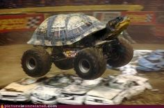 Ninja Turtle Monster Truck Has Science Gone Too Far? Or Not Far Enough?