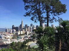 San Francisco is a magical place to live.