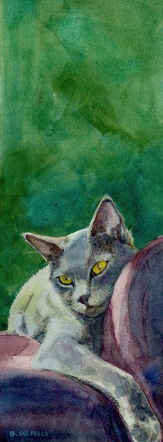 Belinda Del Pesco Fine Art Blog: Nik-Nik, Lounging.  Sophisti-cat. Kim Overton, Snohomish, WA