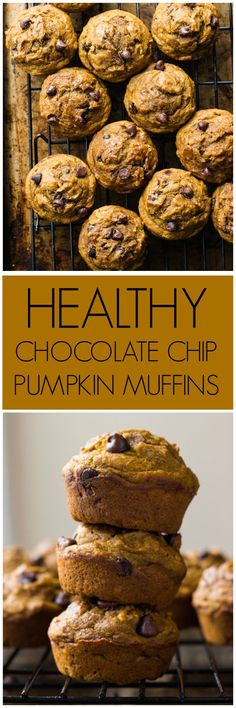 Healthy Chocolate Chip Pumpkin Muffins - made with coconut oil, white whole wheat flour, and sweetened with honey. These are by far the BEST healthy pumpkin muffins | http://littlebroken.com /littlebroken/