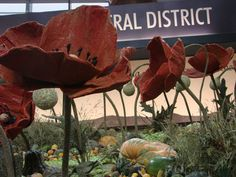 District exhibits commemorate 100 years of Anzac at Sydney Royal Easter Show - ABC News Easter Show, Remembrance Day Poppy, South Wales, Farming, Poppies, Sydney, Creativity, Crafting, Spirit