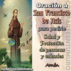 """ORACIÓN A SAN FRANCISCO DE ASÍS PARA PEDIRLE SALUD Y PROTECCIÓN DE PERSONAS Y ANIMALES.....  COMPARTE A SAN FRANCISCO DE ASÍS Y ESCRIBE """"AMÉN"""" PARA PEDIR SALUD Y PROTECCIÓN"""