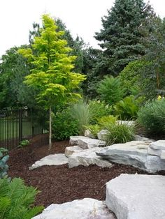 Great outdoor landscaping ideas site. I pinned this as a great idea for my side yard out front.  Low maintenance boulders!!! And mulch.