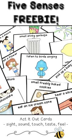 Looking for a way to introduce your healthy habits unit to your students? Begin your unit with this concept attainment lesson on making healthy choices! Five Senses Kindergarten, Five Senses Preschool, 5 Senses Activities, Wellness Activities, Free Preschool, Kindergarten Activities, Writing Activities, Activities For Kids, September Activities