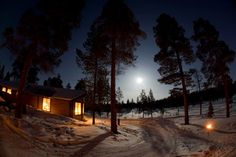Overnight Trip with Sleddogs, Active Lapland