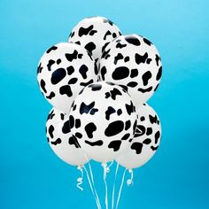 Cow Holstein Black Print Farm Barn Animal Birthday Party Balloon Latex: White Latex balloons with Cow Holstein Black Print Cow Birthday, Cowgirl Birthday, Cowgirl Party, Animal Birthday, Cowboy Theme, Western Theme, Birthday Ideas, Birthday Parties, Farm Animal Party