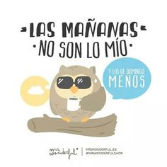 Las mañanas no son lo mío. Mr Wonderful