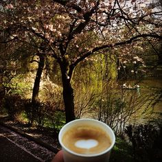 Enjoying a sunny Sunday walk through the park with the family, while enjoying a delicious cup of organic coffee.  #instagood #instacoffee #cappuccino #coffee #latteart #organic #love #heart #family #park #spring #blossom #photo #enjoying #life #kaffee #wiesbaden #herz #kurparkwiesbaden #frühling #foto