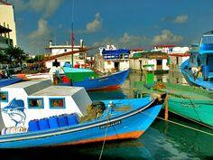 Male fishing harbour, Maldives