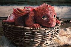 a wee little dragon for me . pretty please Make A Dragon, Year Of The Dragon, Little Dragon, Drake, Im Crazy, Mythical Creatures, Things To Buy, Film Festival, Nerdy