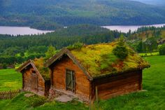 Grass Roof Houses, Norway photo via veturinn - Blue Pueblo