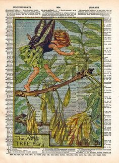 Vintage Flower Fairy art, Ash Tree Fairy, Fairy art print, Dictionary print art