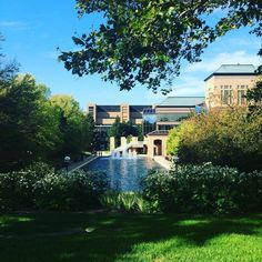 A stunning day on North Campus!