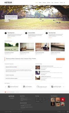 Meteor - Responsive HTML5 Template  #html5templates #responsivetemplates #html5/css3 #onepagetemplates