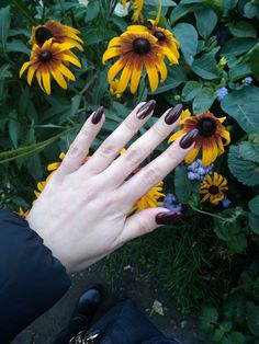 #nail #manicure #nails #Autumn