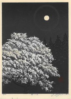 Photo: Shufu MIYAMOTO【sakura ichigi】宮本秋風[桜一木]