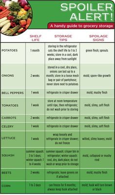 Spoiler chart for vegetables. How long they keep and where to store them.