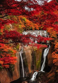 Beautiful Landscape photography : Fukuroda Falls Ibaraki Japan: photo by Janiar Putra 袋田の滝 Beautiful World, Beautiful Places, Beautiful Pictures, Beautiful Beautiful, Fall Pictures, Nature Pictures, Beautiful Waterfalls, Beautiful Landscapes, Landscape Photography