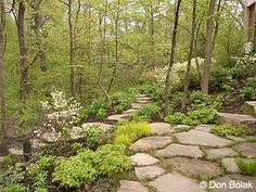 Winsome Woodlands Garden  Yahoo Image Search Results  Garden Lee River  With Outstanding  Best Ideas About Steep Hillside Landscaping On Pinterest  With Captivating Wickes Garden Paint Also Garden Design Small Gardens In Addition Acw Garden Centre Bradford And Garden Centre Syon Park As Well As Garden Makeover On A Budget Additionally Black Garden Statues From Pinterestcom With   Outstanding Woodlands Garden  Yahoo Image Search Results  Garden Lee River  With Captivating  Best Ideas About Steep Hillside Landscaping On Pinterest  And Winsome Wickes Garden Paint Also Garden Design Small Gardens In Addition Acw Garden Centre Bradford From Pinterestcom