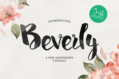 Beverly UPDATED by MediaLab on @creativemarket