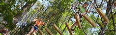 TreeTop Adventure - dizzying course of zip-lines and other high-flying challenges deftly woven into the natural forest behind the Virginia Hand Callaway Discovery Center